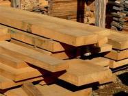 madeira sustentavel
