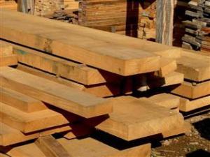 madeirasustentavel1